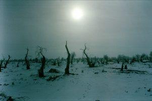 Le désert du Taklamakan. 20 milliards de tonnes de pétrole, soit 30 % des réserves du pays, 10 milliards de mètres cubes de gaz naturel, mais aussi des camps de travaux forcés.Il est pour sa plus grande partie interdit aux étrangers.