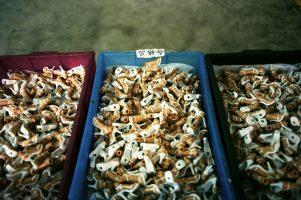 Une chaussure coûte, à la vente, ce que gagne une ouvrière en un jour... 75 % des jouets vendus dans le monde sont fabriqués en Chine, par des mingongs.